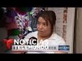 CORN - Legislador mexicano propone boicot al maíz de EEUU | Noticiero | Noticias Telemundo