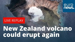 NEW ZEALAND DOLLAR INDEX Fears rise New Zealand volcano could erupt again | LIVE