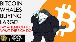 BITCOIN Bitcoin Whales Buying Big! Pay ATTENTION to What the Rich Do