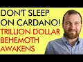 DON'T SLEEP ON CARDANO! TRILLION DOLLAR CRYPTO BEHEMOTH AWAKENING - WITH CHARLES HOSKINSON