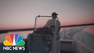 """They're Almost All Dead"": Oyster Farmers In Florida Hit Hard By Hurricane Michael 