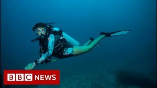Saving India's coral reefs - BBC News