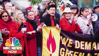 Jane Fonda Talks About Her Climate Change Protests And Getting Arrested | NBC News Now