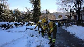 Brigadas Forestales trabajan en Madrid tras las nevadas