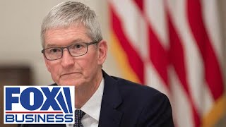 Apple CEO Tim Cook faces criticism for pulling Hong Kong map app