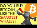 DO YOU BUY BITCOIN LIKE THE SMARTEST WHALES? Surprising Crypto News