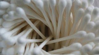 COTTON Italia: da oggi è vietata la vendita dei cotton fioc di plastica