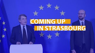 Coming up in Strasbourg: Sakharov Prize, EU ombudsman and the rule of law in Malta