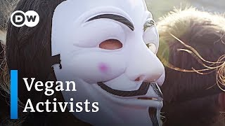 Vegan activists unmask the truth behind animal agriculture   DW Stories