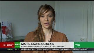 BOLLORE Huile de Palme au Cameroun : le groupe Bolloré sur le banc des accusés