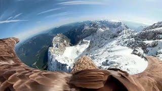 ADLER REAL ESTATE AG Einzigartige Bilder: Adler fliegt mit Kamera über die Alpen