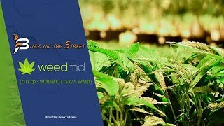 """The Latest """"Buzz on the Street"""" Show: Featuring WeedMD (TSX-V: WMD) Cannabis Cultivation News"""