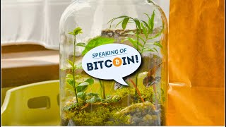 BITCOIN A Brief History of Bitcoin Tipping (and Where Twitter Fits in it)