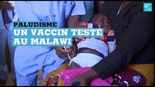 Paludisme : un premier vaccin testé au Malawi