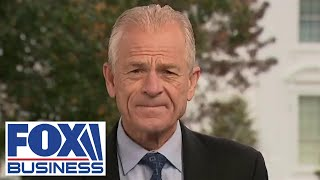 Peter Navarro claims a Biden win would cause depression, job loss