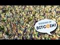 Life on Bitcoin - 2021 Edition