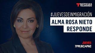 EN VIVO: La abogada de inmigración Alma Rosa Nieto contesta tus preguntas