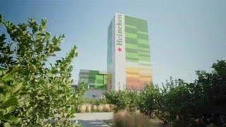 HEINEKEN Heineken, primera compañía en elaborar cerveza con electricidad 100 % renovable