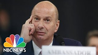 Castor Questions Sondland's Recollection Of Events Without Notes | NBC News