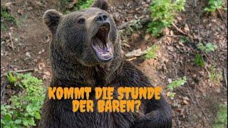 Kommt die Stunde der Bären? Videoausblick