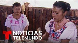 WHEAT Dos mujeres en México preservan el grano del maíz con deliciosos platillos