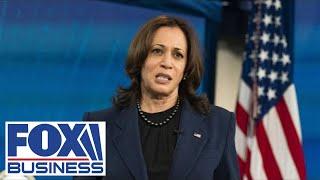 Biden DHS 'fiercely' defending Kamala Harris for not visiting border
