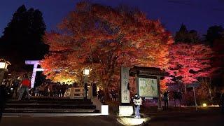 O outono vermelho e azul em Urabandai no Japão