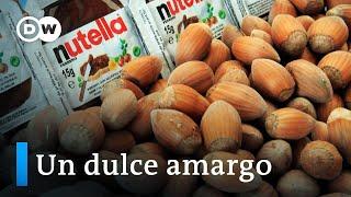 Nutella y la explotación de los jornaleros turcos