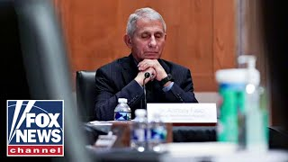 REACT GRP. ORD 0.25P 'The Five' react to Fauci's continued denial