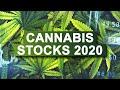 Cannabis Stocks. Best Marijuana Stocks In 2020. Canopy Growth Stock