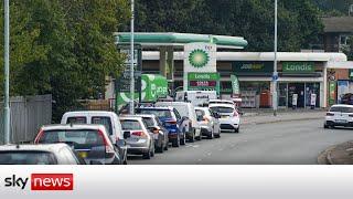 Transport Secretary urges people not to panic buy petrol