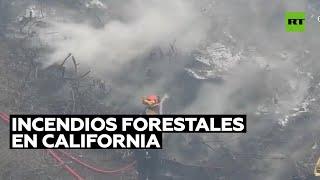 Arrestan a una persona presuntamente implicada en los incendios forestales en California