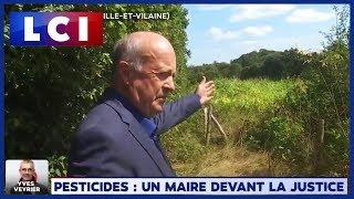 Pesticides : un maire devant la justice