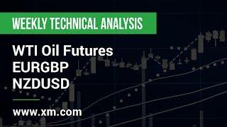 WTI CRUDE OIL Weekly Technical Analysis: 16/09/2019 - WTI Oil Futures, EURGBP, NZDUSD