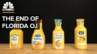 ORANGE JUICE Why Most Orange Juice Comes From Brazil, Not Florida | CNBC