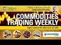 Commodities: il punto sulle Soft!