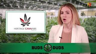AMP LIMITED Buds & Duds: Ontario's cannabis retail expansion plan gives cannabis stocks a lift