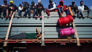 LIVE CATTLE Migranti in America fra carri bestiame e filo spinato