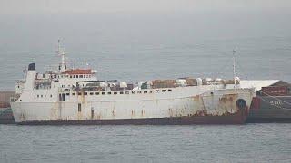 España sacrifica a los 900 terneros bloqueados en el buque Karim Allah