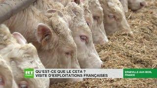 Le CETA, une menace pour l'agriculture française et européenne ?