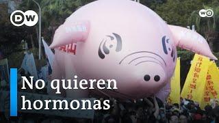 Protestas contra el cerdo estadounidense en Taiwán