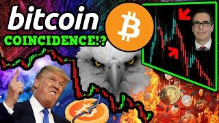 BITCOIN BITCOIN: They Are LYING to YOU! Blue WHALE BTC Conspiracy? What They're Not Telling You!