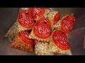 CORN - Celebrate National Popcorn Day with the king of kettle corn!