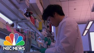 Inside A Major Coronavirus Vaccine Effort That Hopes To Start Early Production  | NBC Nightly News