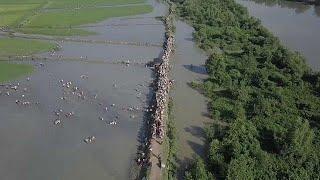 Les rohingyas toujours en fuite par milliers
