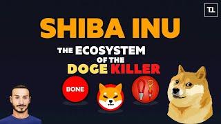 IG TOKEN SHIBA INU Token 🐕 CRYPTO Review