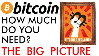 BITCOIN How Much Bitcoin Do You Need? The Big Price Picture [2020]