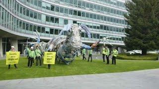 NESTLE N Green campaigners accuse Nestlé over single-use plastics